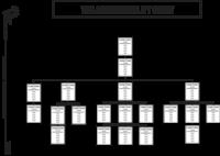 EOS Accountability Chart